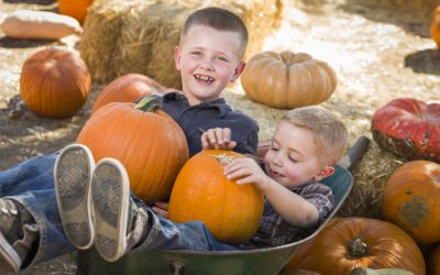 Eat More Pumpkin for Your Smile